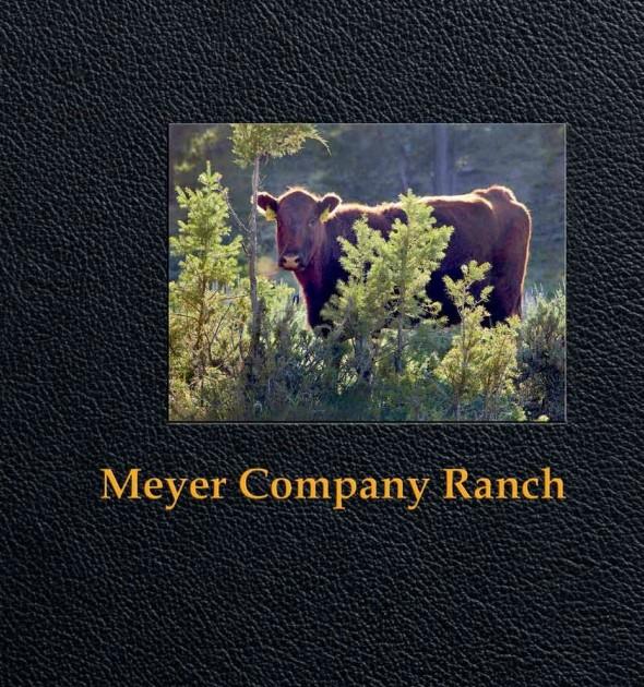 Meyer Ranch Book